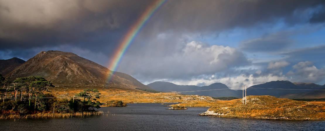 Ireland 7